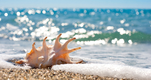 把憂鬱留在沙灘上
